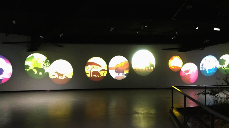 The Application of Gobo Projector in the Museum(图5)
